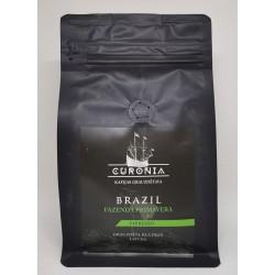 "Curonia ""Brazil"""